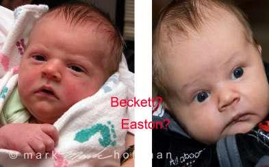 Beckett_Easton_cap1_var1.jpg